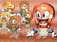 Tikal The Echidna Wallpaper