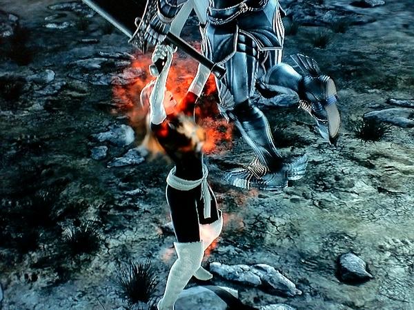 File:Nemesis Phoenix SCV4.jpg