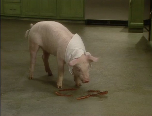 File:Bakin Bacon w Macon 5.png