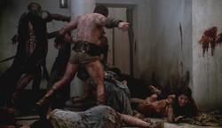 Spartacuss1232