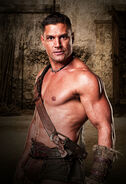 Crixus-spartacus-blood-and-sand-15420951-1400-2048 (1)