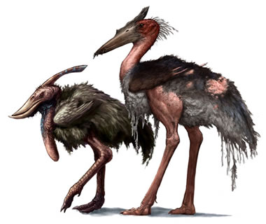 Atercurisaurus Carrion Storks | Specu...