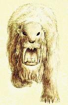 Female bardelot front