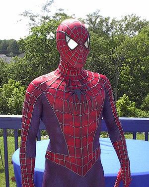 Image - Spider Man replica Costume by MalottPro.jpg ...