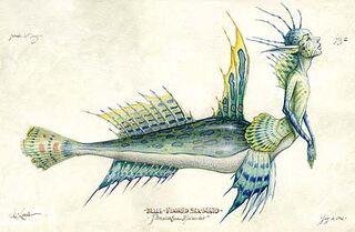 Blue-Finned Seamaid