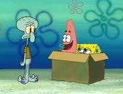 Idiot Box 024