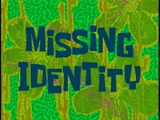 File:Missing Identity.jpg