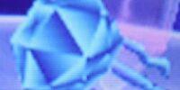 Diamond Jellyfish