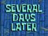 SeveralDaysLater