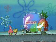 Bubblestand 093