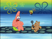 Confess a bear 1