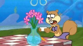 Flowers for Sandy SpongeBob Video