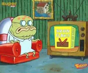 File:Bran flakes tv.jpg