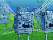 SpongeHenge location-2