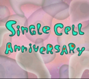Single Cell Anniversary (transcript)