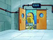 Planktonsregular2