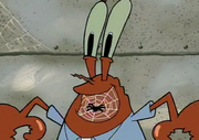 Mr.krabs