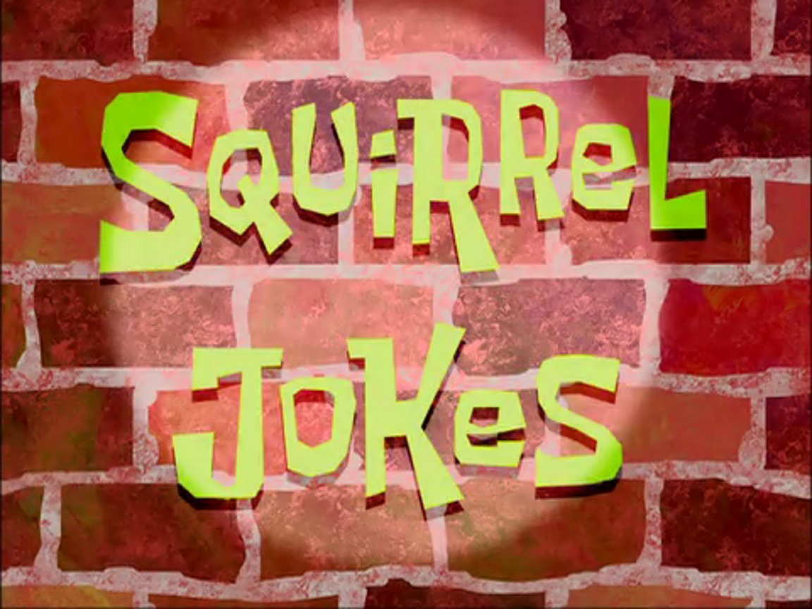 Squirrels Jokes Squirrel Jokes