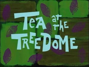 Tea at the Treedome