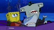 Shark Lightning in Sharks vs. Pods17
