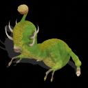 Tri-hoornbo