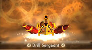 Entrance Drill-Sergeant