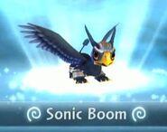 Sonic Boom Air