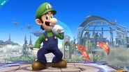Luigi14