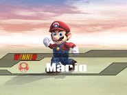 Mario-Victory3-SSBB