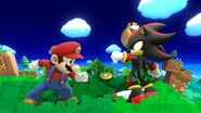 Mario VS Shadow