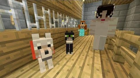 Video - Minecraft Xbox...L For Lee Minecraft Stampy
