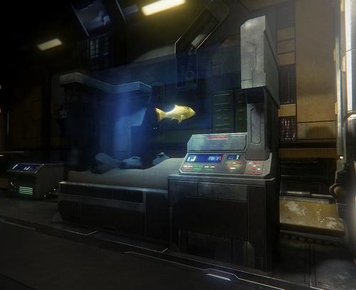 File:Fishtank Gold.jpg
