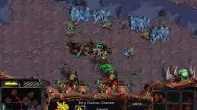 Starcraft Brood War - Zerg Campaign Mission 7 - Drawing of the Web Walkthough Lets Play
