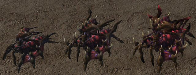 File:Niadra Evolution SC2-HotS Game1.jpg