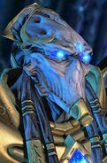 Zealot SC2 Head1