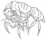 Blister Bug print