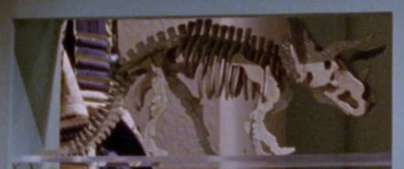 File:Triceratops skeleton model.jpg