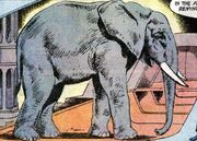 Elephant DC Comics