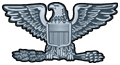 US o-6 rank pin.png