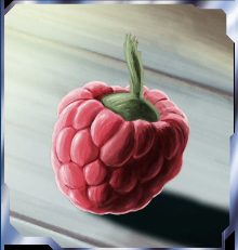 File:Wasaka berry.png