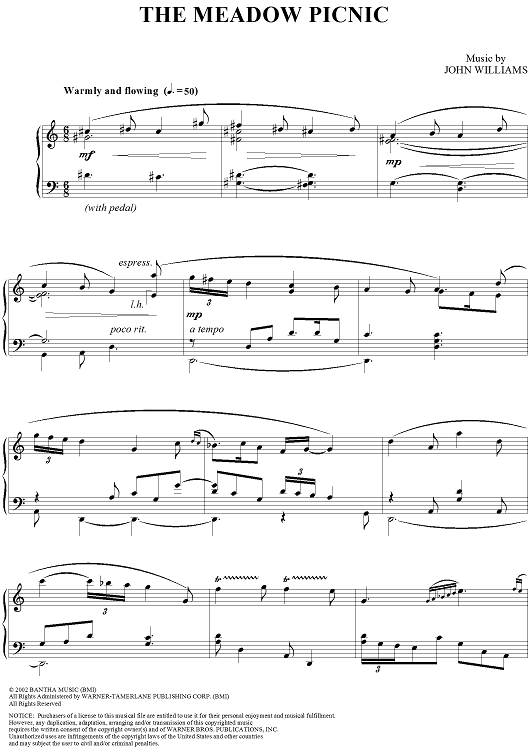Fellowship Of The Ring Motif Score