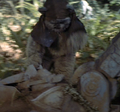 Ewok foot hacker.png