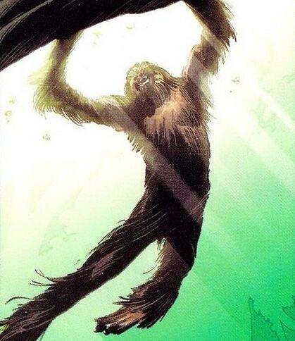 Fil:Chewbacca 004.jpg