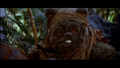 Another Ewok.png