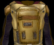 Echani battle armor