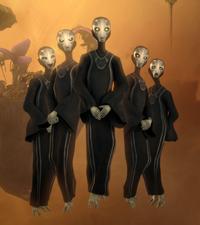 Force Priestesses Destiny