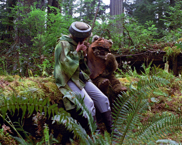 File:Leia Wicket.png