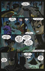 Robin 87 (05)