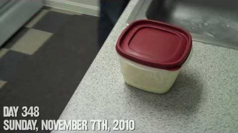 Cauldron of Egg Salad (Day 348 - 11 7 10)