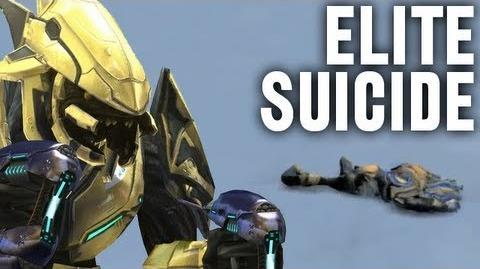 Elite Suicide